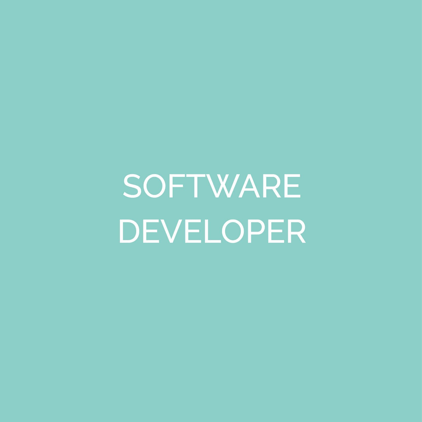 Software-Developer